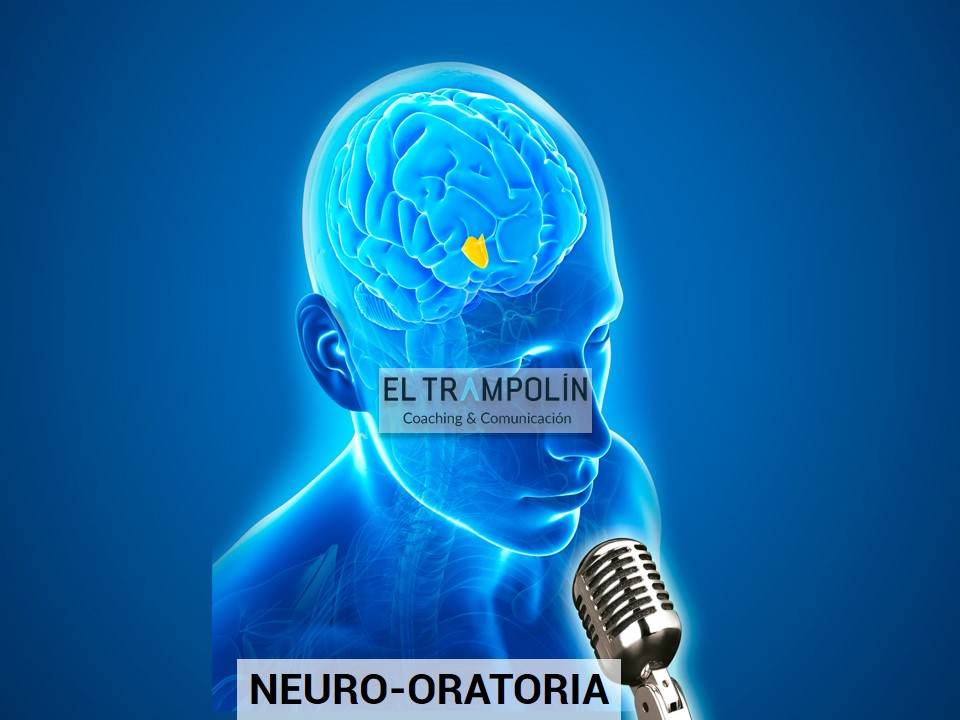 Neuro-Oratoria